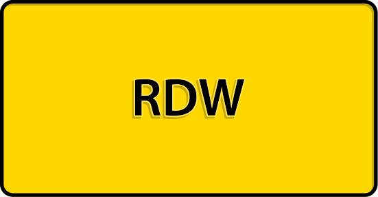 RDW categorie Tips en Tools
